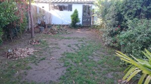 AR' Paysage paysagiste Nantes création entretien de jardin aménagement paysager