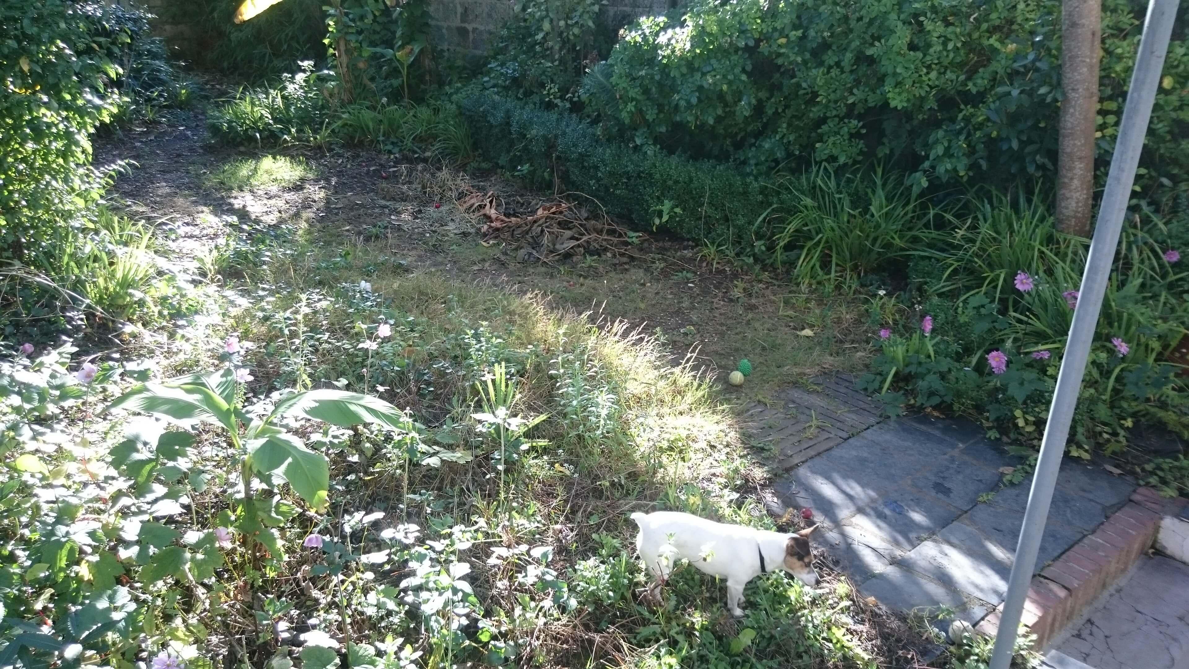 Ar 39 paysage terrasse en cumaru nantes 44 for Entretien jardin nantes