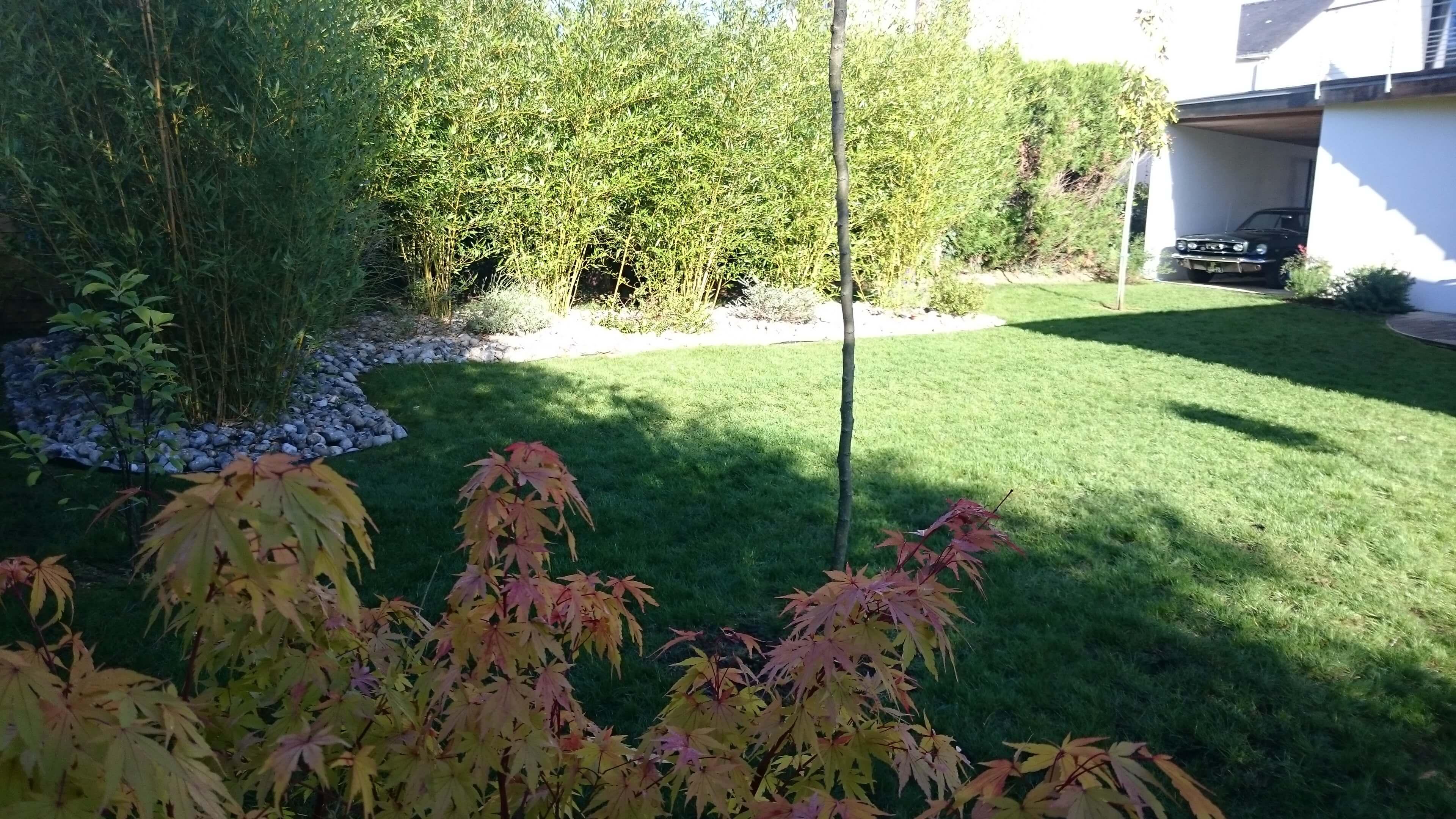 ar-paysage_plantations-jardin